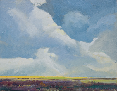 Chris Stoffel Overvoorde painting, Saw Grass in Distance, for sale from Eyekons Gallery